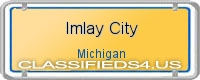 Imlay City board